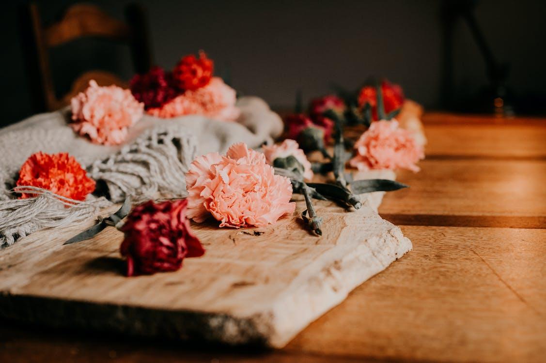 весілля, вродлива, вродливий