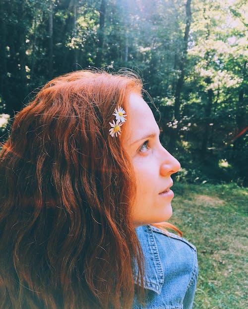 Foto profissional grátis de garota, gengibre, golden sun, ruivo