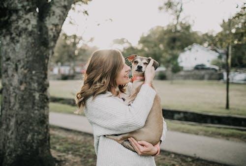 Foto profissional grátis de abraçando, abraço, amor, animal