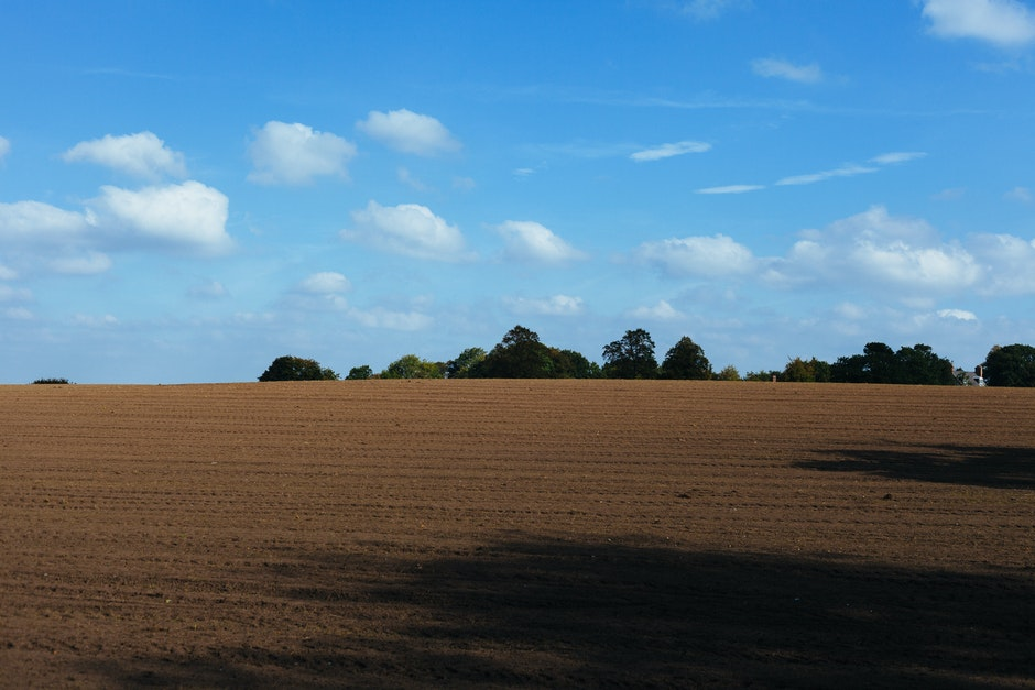 agriculture, field, soil