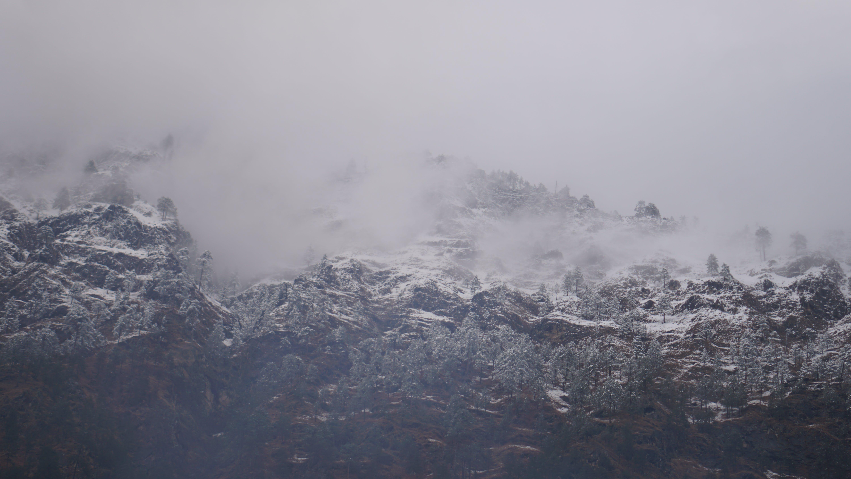 Δωρεάν στοκ φωτογραφιών με βουνό, δέντρα, Εξωτερικός χώρος, λόφος