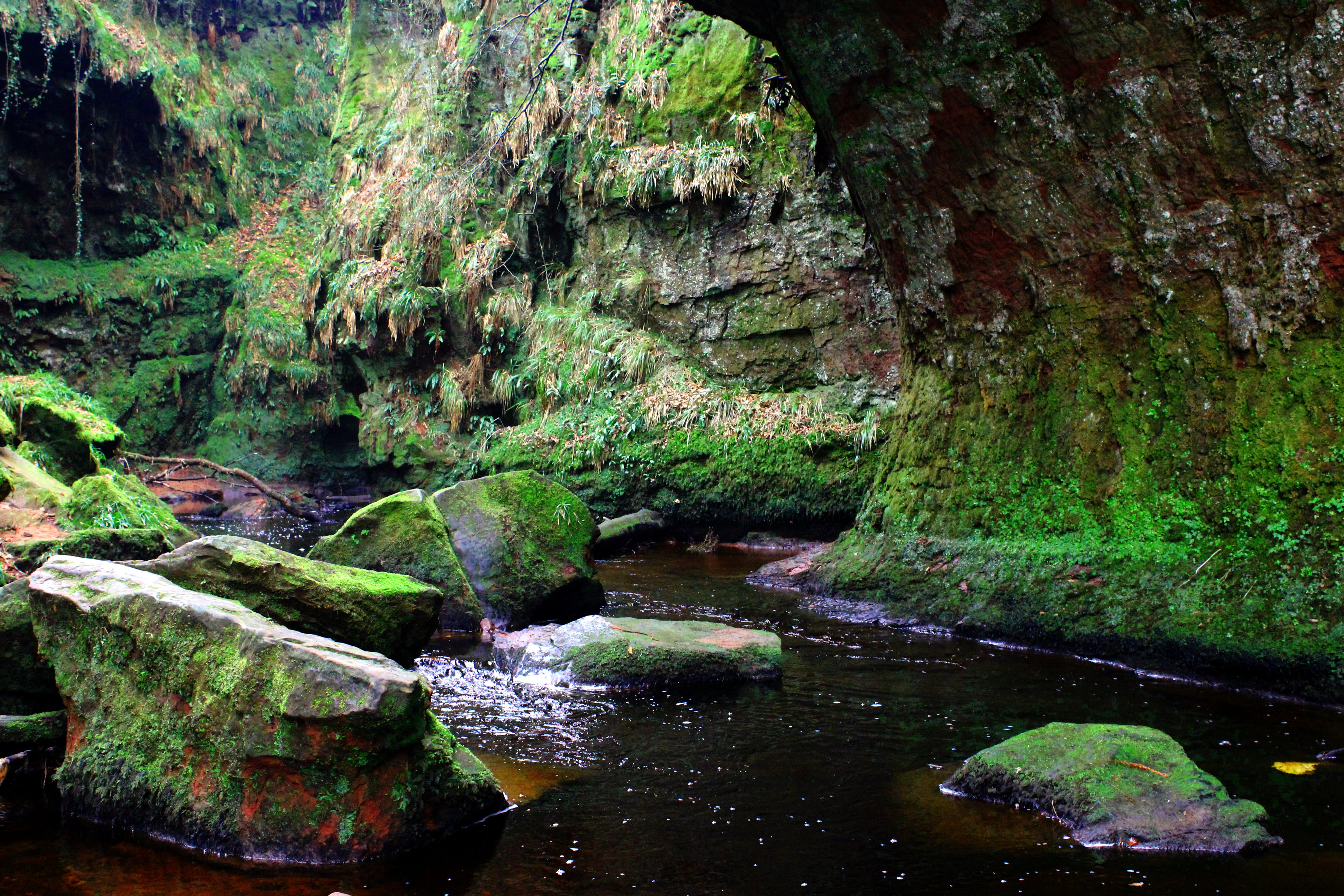 Free stock photo of canon, cliffs, creek, devils pulpit
