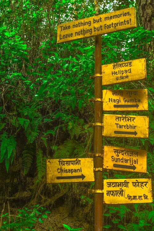 Základová fotografie zdarma na téma džungle, informační tabule, myšlenky, nepál