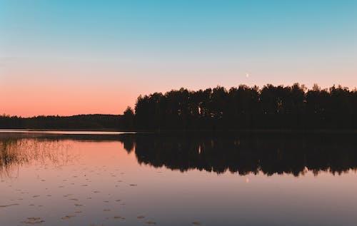 Kostenloses Stock Foto zu bäume, dämmerung, finnland, friedlich