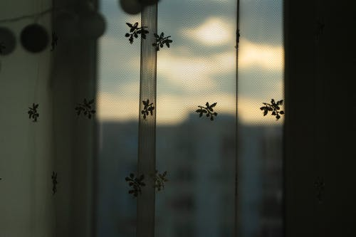 Free stock photo of backlight, curtains, details