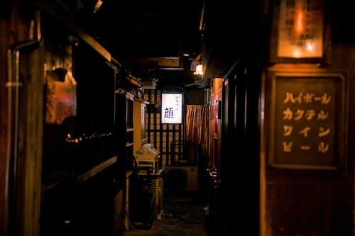ネオン, 大阪, 居酒屋, 日本の無料の写真素材