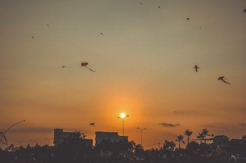 Free stock photo of # Hoàng hôn, # Tiếng Việt, #tverynguyen, #tverynguyenphotoraphy