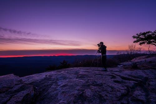 Foto d'estoc gratuïta de a l'aire lliure, alba, arbres, aventura