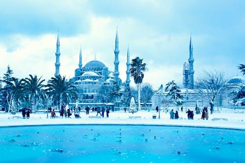 イスタンブール, スルタナメット, ブルーモスク, モスクの無料の写真素材