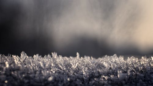 Free stock photo of crystal, frost, icing, landscape