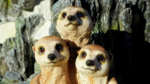 Figurine of Thee Meerkats
