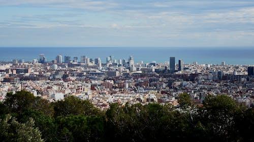 Darmowe zdjęcie z galerii z barcelona, budynki, drzewa, hiszpania