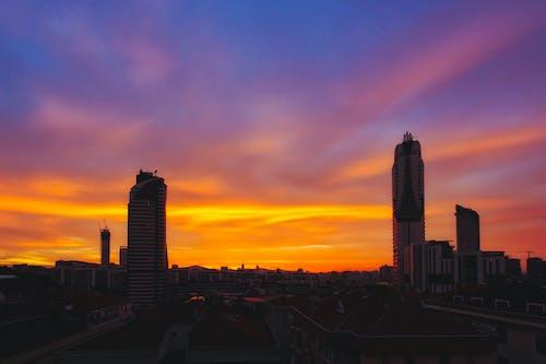 オレンジ, オレンジ色の空, 太陽, 早朝の無料の写真素材