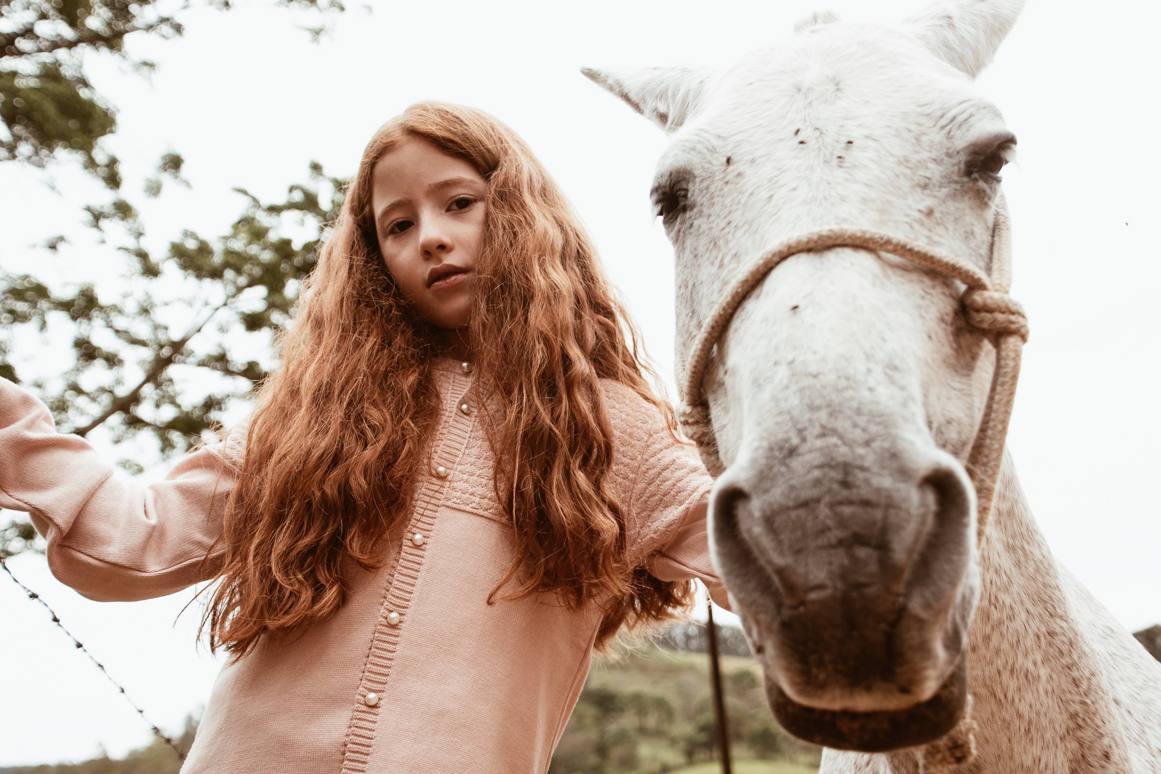 Photo of Girl Standing Beside White Horse