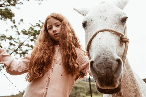 Photo of Girl Standing Beside White Horse keeping calm around animals