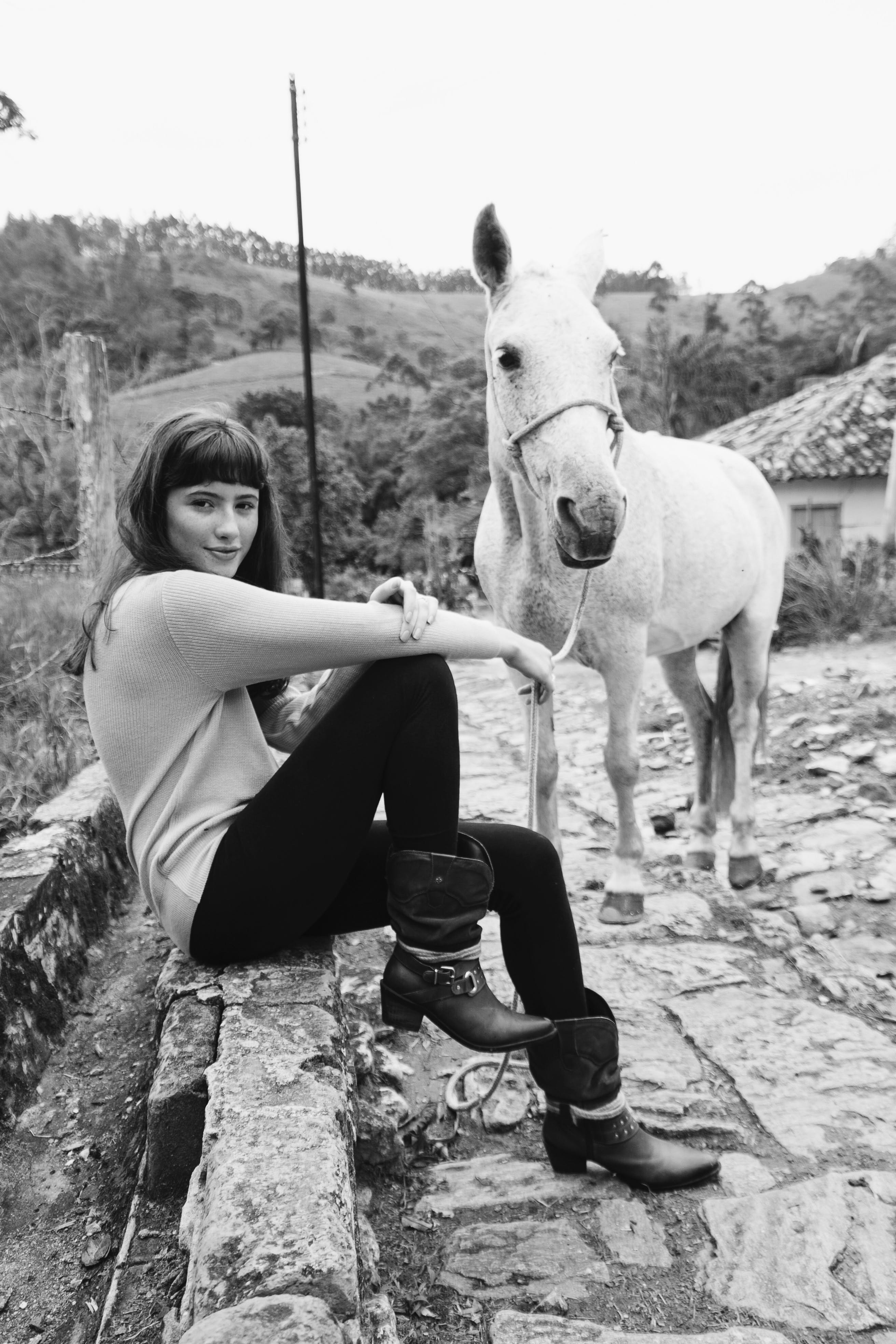 of animal, beauty, black and white, country
