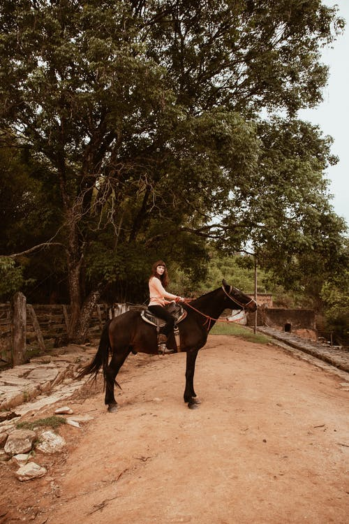 Woman Riding Horse Near Tree
