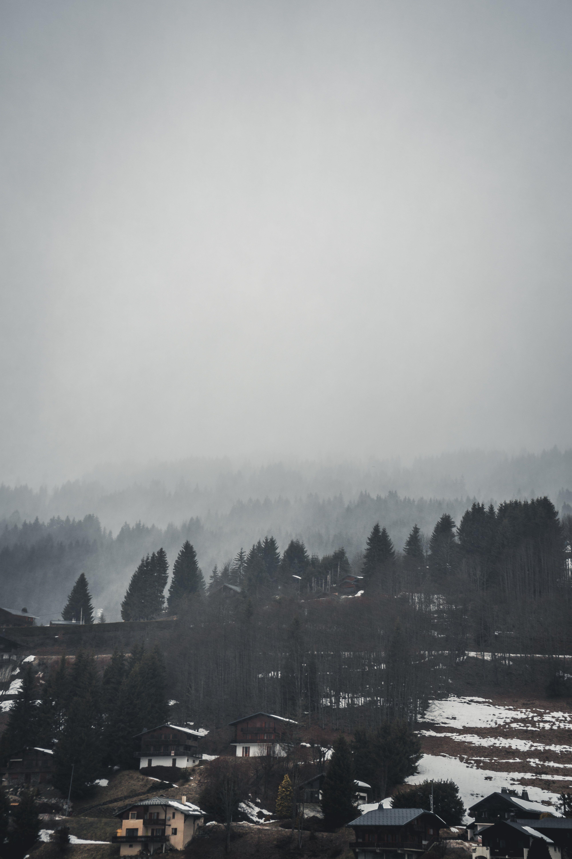 Δωρεάν στοκ φωτογραφιών με brume, βουνό, δέντρα, κακόκεφος