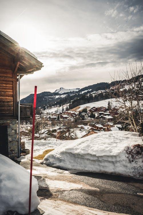 Immagine gratuita di alberi, ambiente, bianco, casa di legno