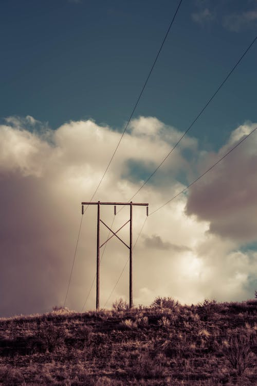 Free stock photo of perspective, power lines, scrub