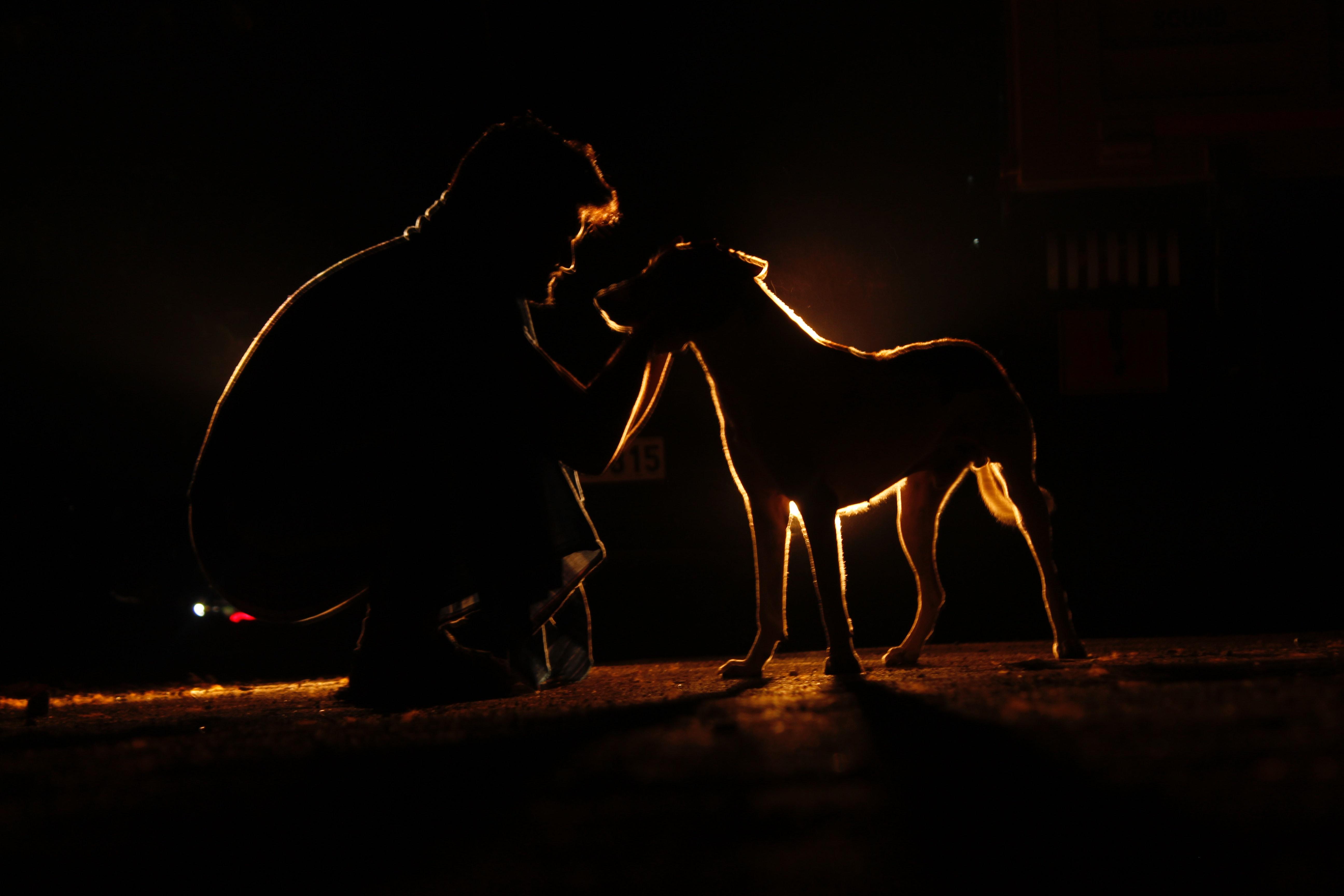 Free stock photo of #dark, #dog #man #shadows