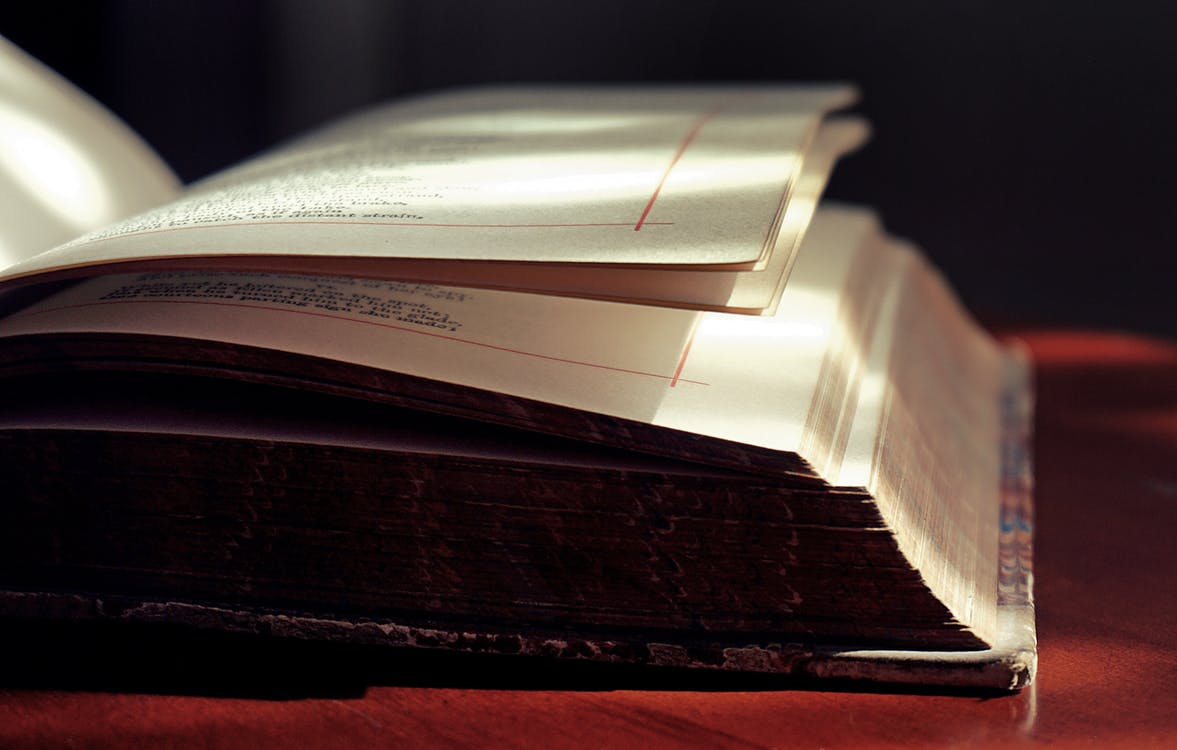 Closed-up Photo of Open Book on Red Surface