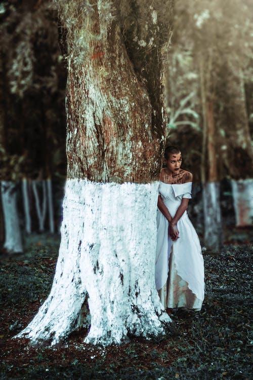 Immagine gratuita di abito, acconciatura, albero, bellissimo