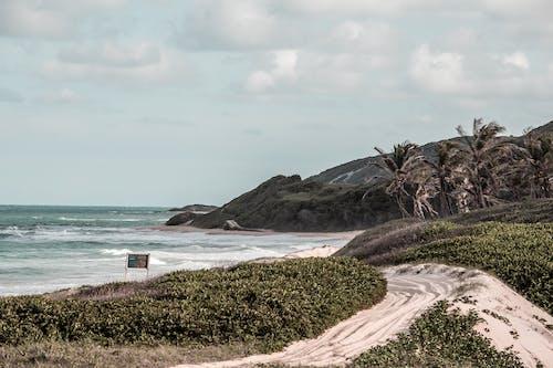 Δωρεάν στοκ φωτογραφιών με ασφάλεια στην παραλία, γάμος στην παραλία, καλύβα παραλίας, καλύβες παραλίας