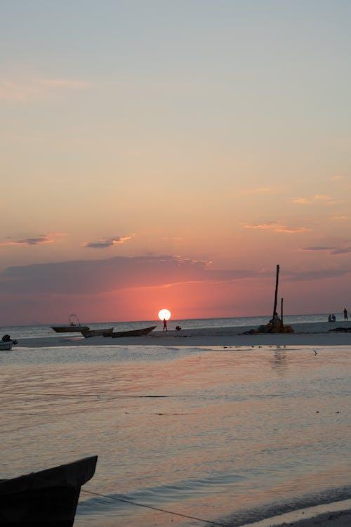 坦桑尼亚, 天空, 太陽, 心情 的 免费素材照片