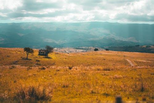 Imagine de stoc gratuită din peisaj