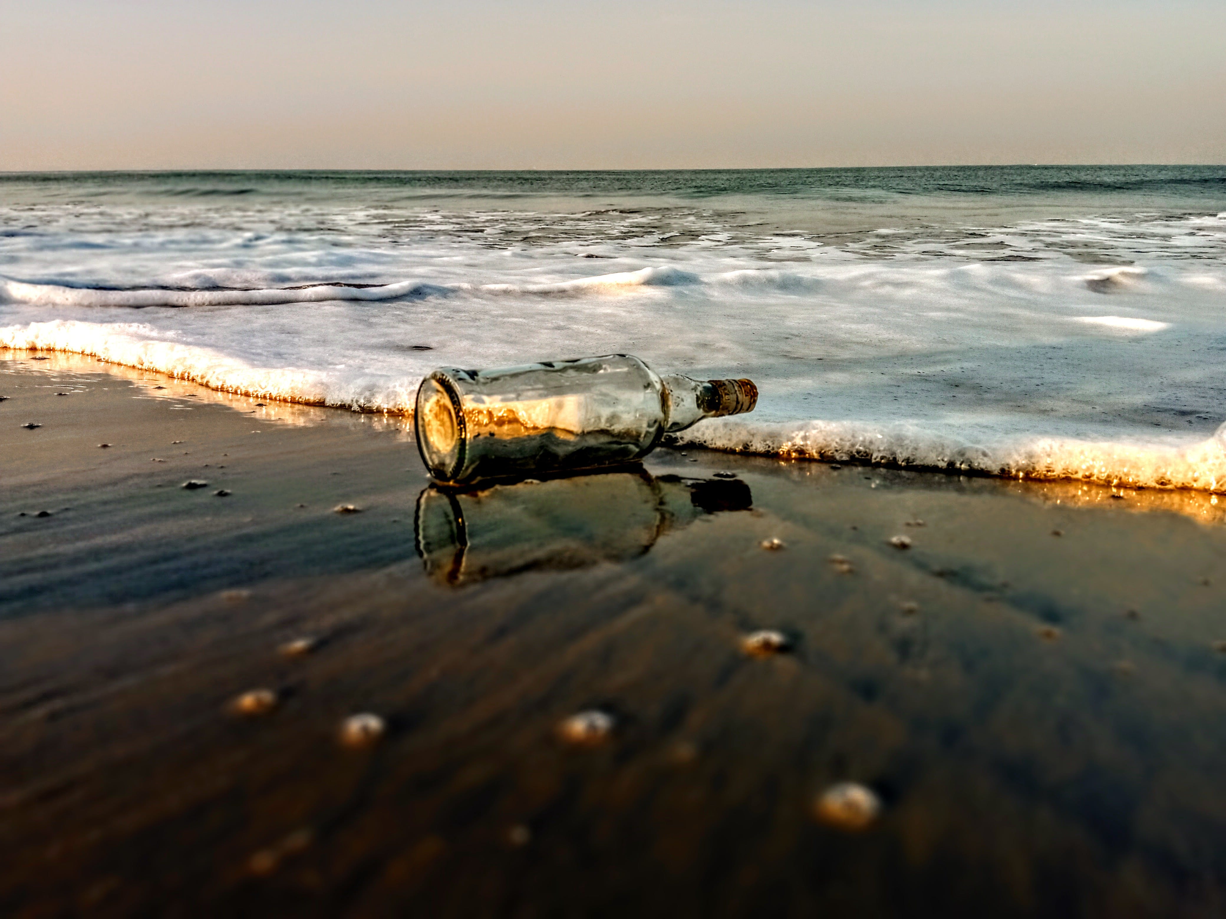 Free stock photo of beach, beer bottle, reflection, waves