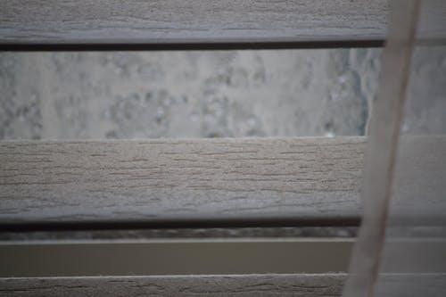 Безкоштовне стокове фото на тему «близько, великий план, Деревина, Дощовий день»