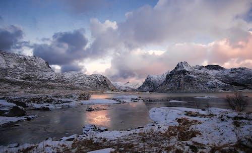 Foto stok gratis pulau lofoten
