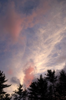 Free stock photo of sky, clouds, trees