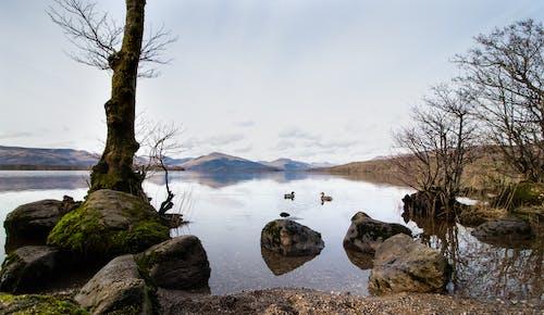 Бесплатное стоковое фото с 10мм, canon, лох-ломонд, пейзаж