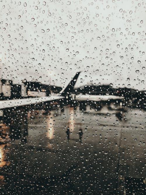 濕, 玻璃, 雨, 雨滴 的 免费素材照片