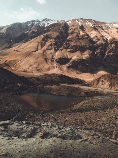 Imagine de stoc gratuită din maimuță de munte, munți, Munții Stâncoși