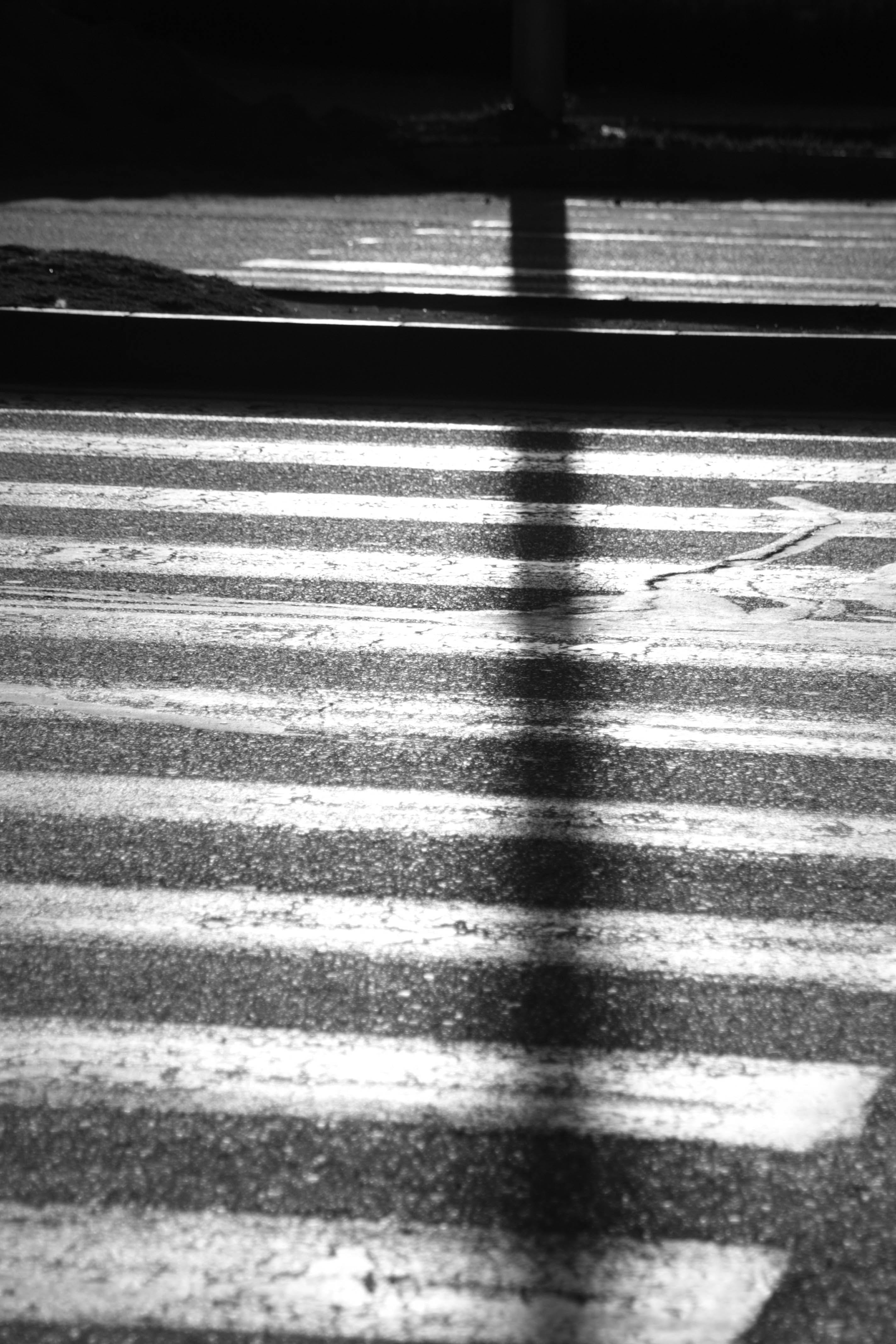 Grayscale Photography Of Pedestrian Lane