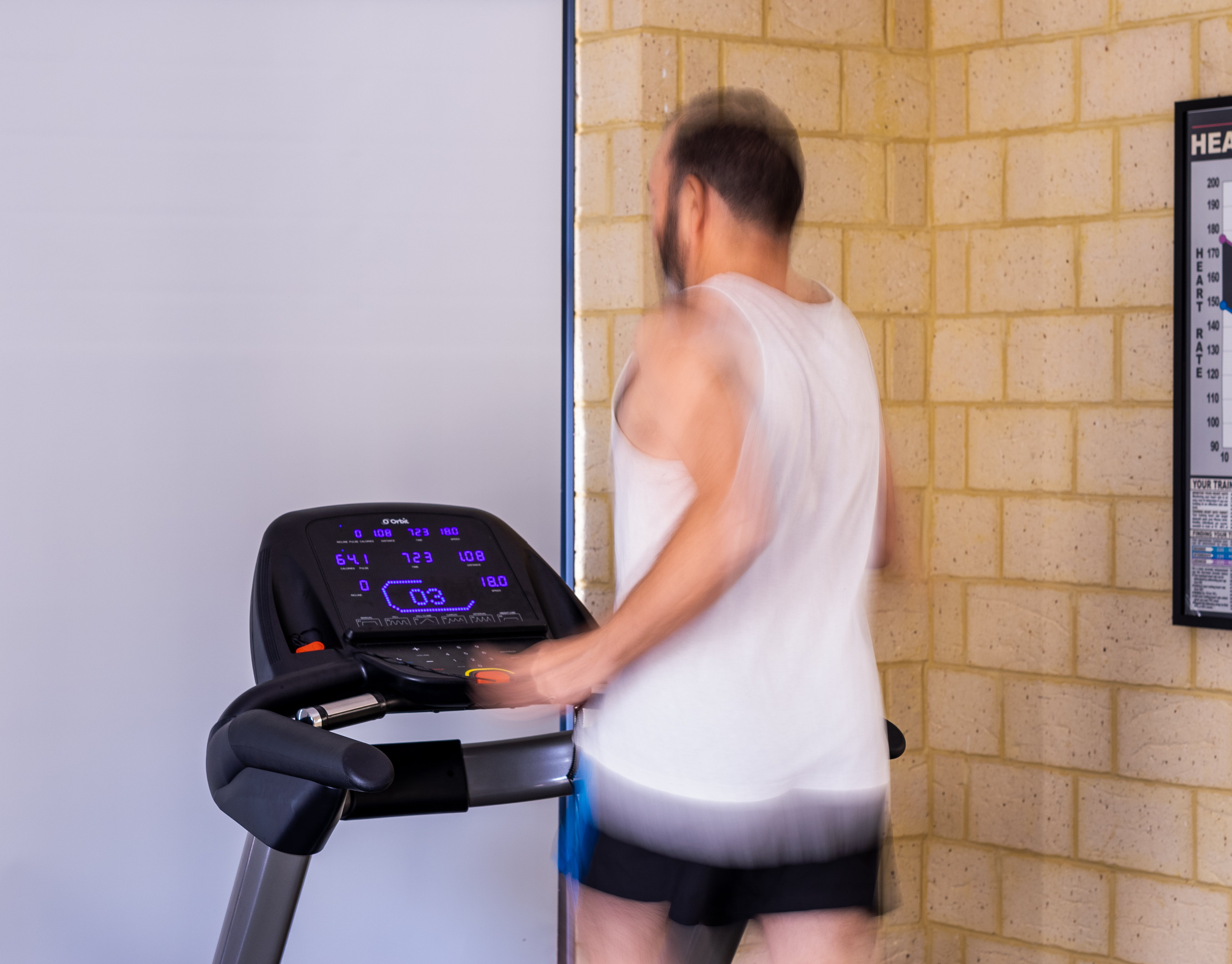 Free stock photo of 18km/hour, brick wal, ghostly, gym