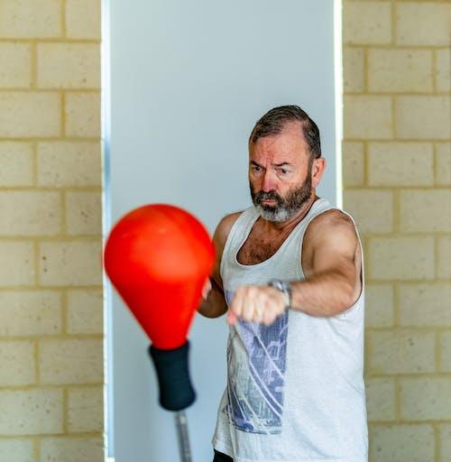 Kostenloses Stock Foto zu boxen, boxsack, fitnessstudio, fokus