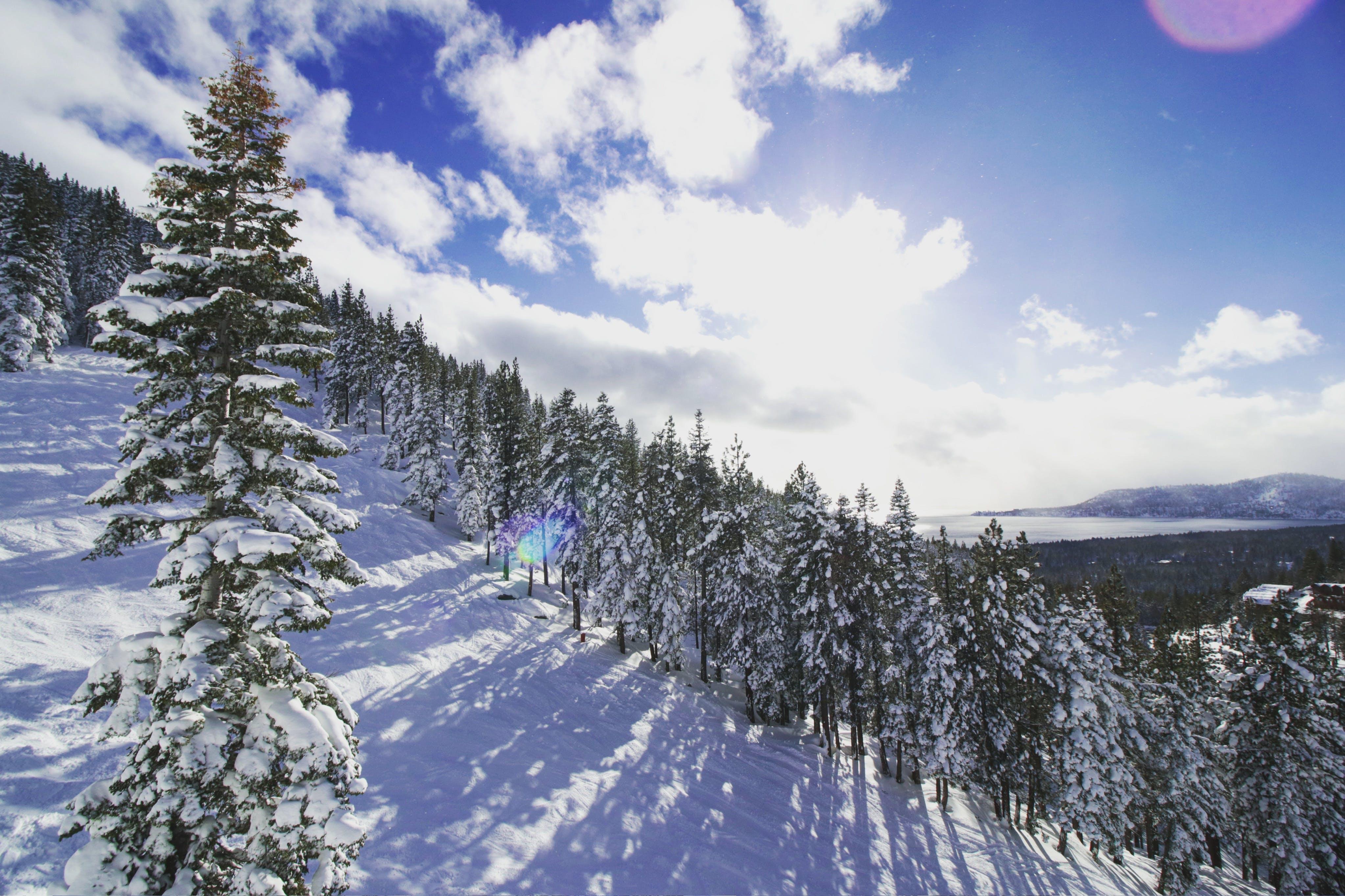Základová fotografie zdarma na téma zasněžené vrcholky hor