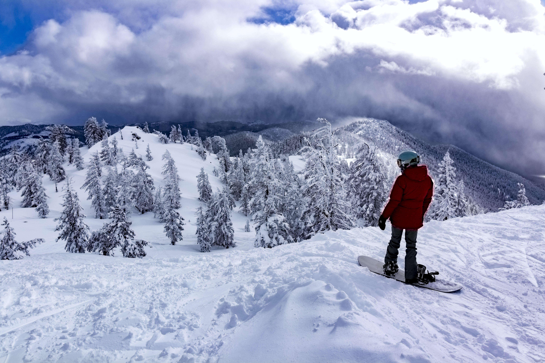 Free stock photo of snow