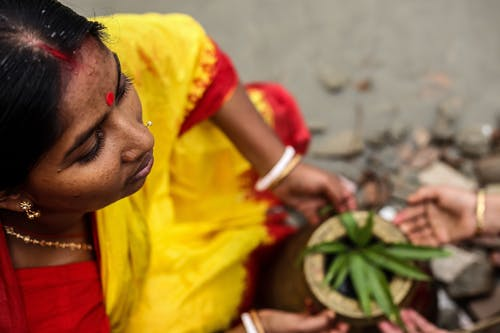 Woman in Yellow and Red Sari Dress Holding Green Plant