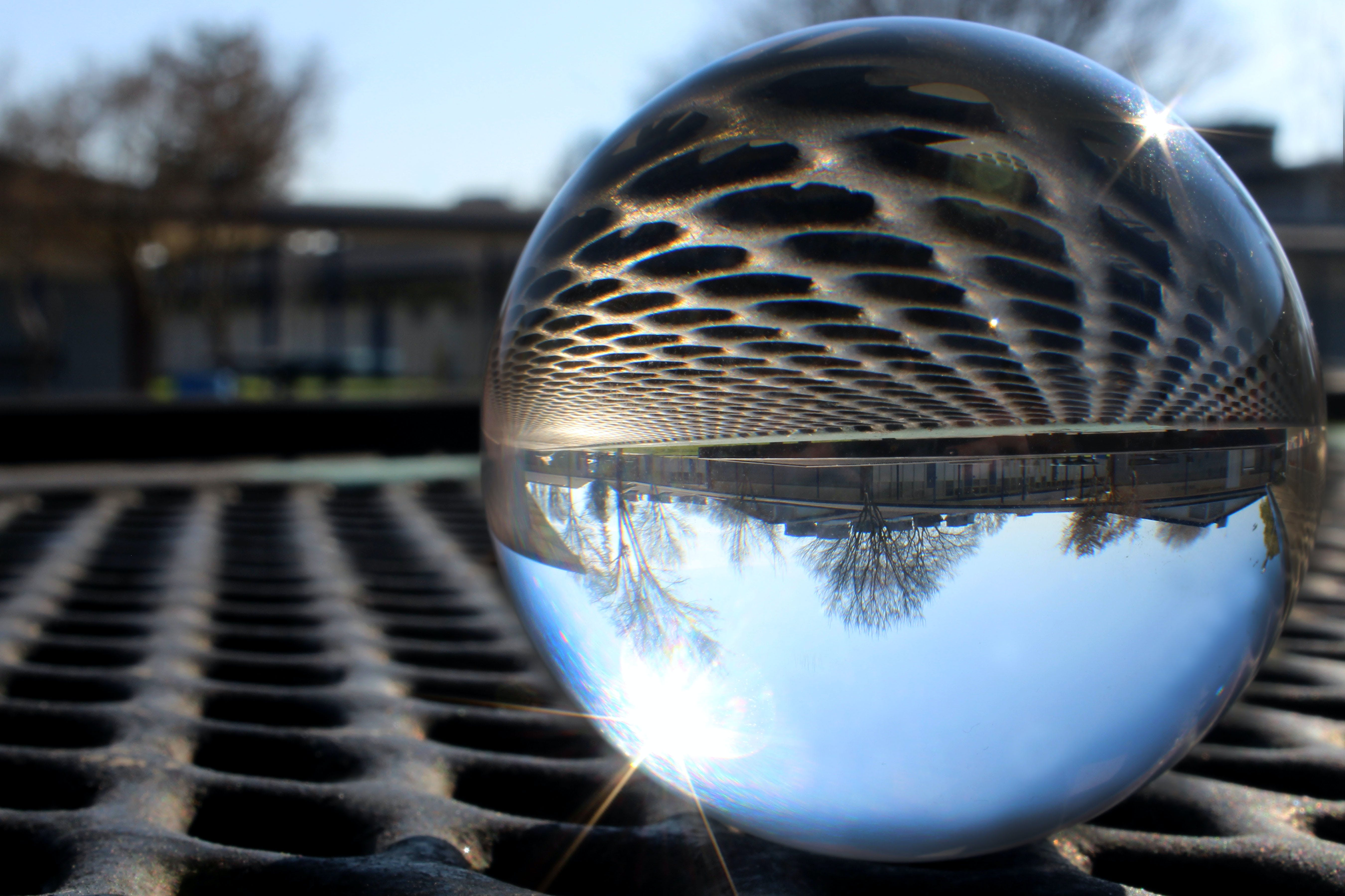 Free stock photo of glassball, school, trees, upside down