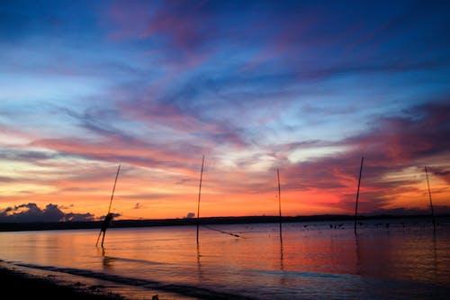 Free stock photo of clouds, fish pens, horizon, sunset