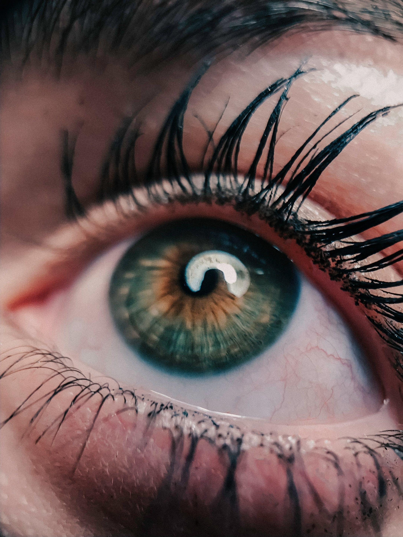 Immagine gratuita di allievo, bellissimo, bulbo oculare, ciglia
