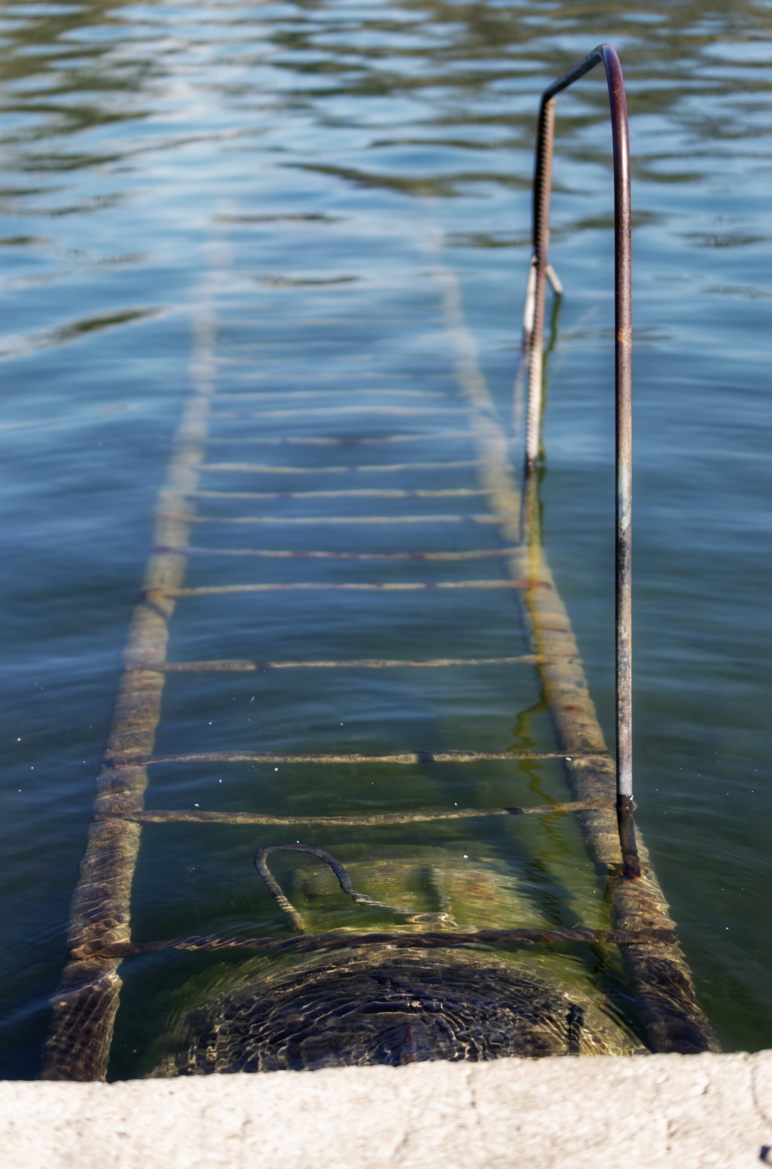 Free stock photo of metal stair under water, pond
