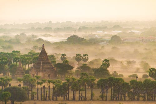 Free stock photo of architectural, asia, foggy morning, pagoda