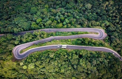 Foto stok gratis alam, alami, aspal, dari atas