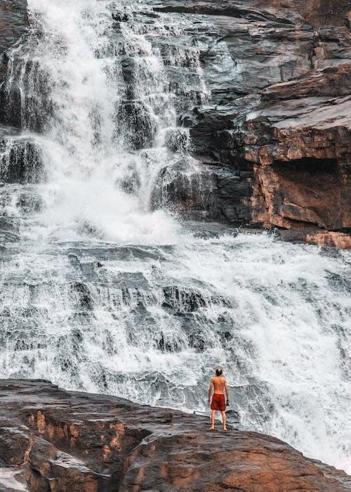Gratis lagerfoto af sri lanka, vandfald